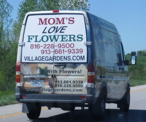Mom's Love Flowers.JPG (641 KB)